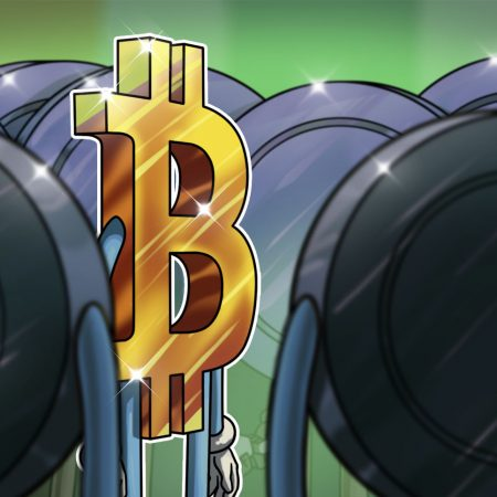 Crypto 'OG' Thinks Altcoins Will Outperform BTC within the Close to Future
