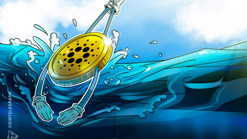The Cardano Basis will protect its independence, says new CEO