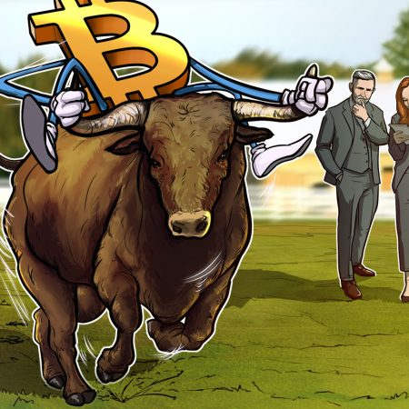 A number of knowledge factors counsel Bitcoin's 2017-style bull run has begun