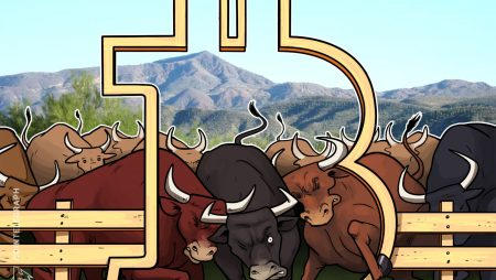 four the reason why Bitcoin's bull run is unbroken regardless of a shock cease hunt