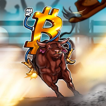 Bitcoin worth, altcoins and the Dow set file highs as bulls run the market