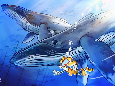 Bitcoin value dives again underneath $16,900 as whale deposits spike once more