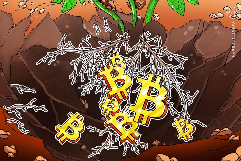 Bitcoin's upcoming Taproot improve and why it issues for the community